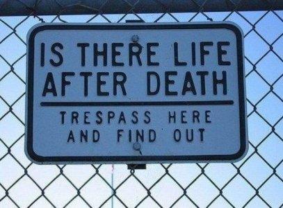 12561-Life-after-death